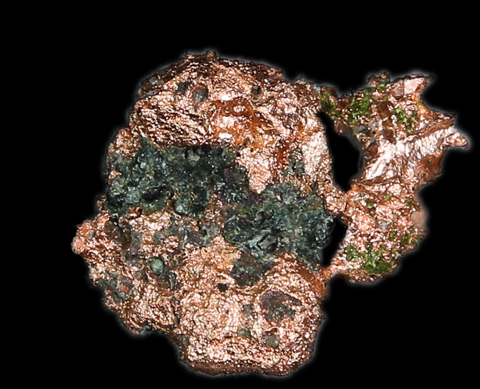COP6b-253