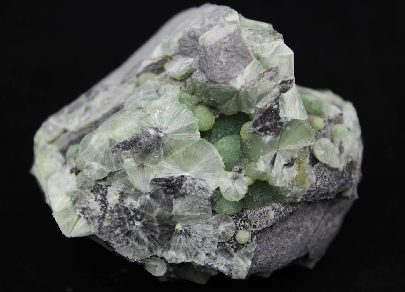 Wavellite Crystal Mineral Specimen Celestial Earth Minerals